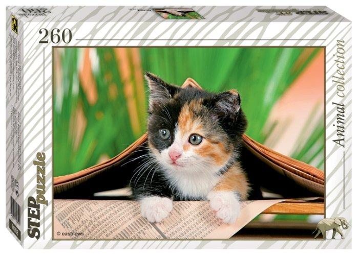Пазл Step puzzle Animal Collection Котёнок (74052), 260 дет.