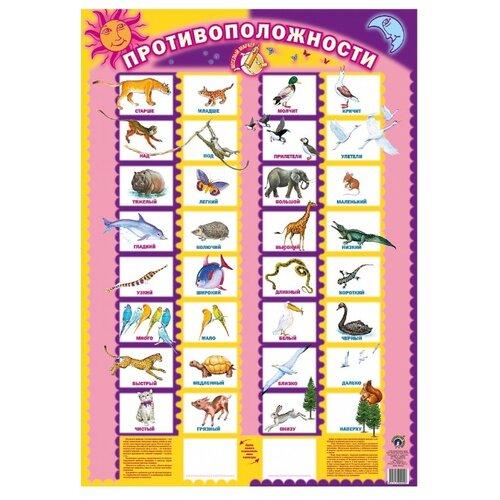 Купить Плакат Маленький гений Противоположности 9029, Обучающие плакаты