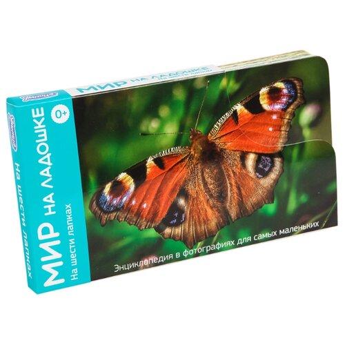 Набор карточек Умница Мир на ладошке. На шести лапках 18x10 см 24 шт. умница мир на ладошке 6 в 1 выпуск 3