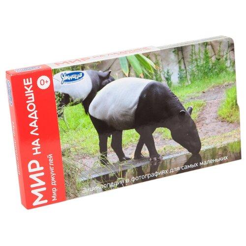 Набор карточек Умница Мир на ладошке. Мир джунглей 18x10 см 24 шт. мир на ладошке 1 мои первые открытия 2002