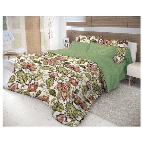 Постельное белье 2-спальное Волшебная ночь Nuts 716343 ранфорс зеленыйКомплекты<br>