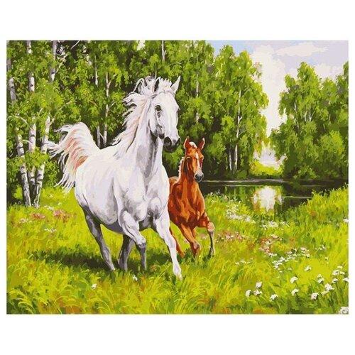 Белоснежка Картина по номерам На воле 40х50 см (139-AB) белоснежка картина по номерам кутерьма 40х50 см 221 ab