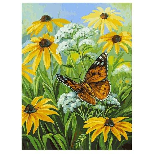 Купить Белоснежка Картина по номерам Цветочная поляна 30х40 см (153-AS), Картины по номерам и контурам