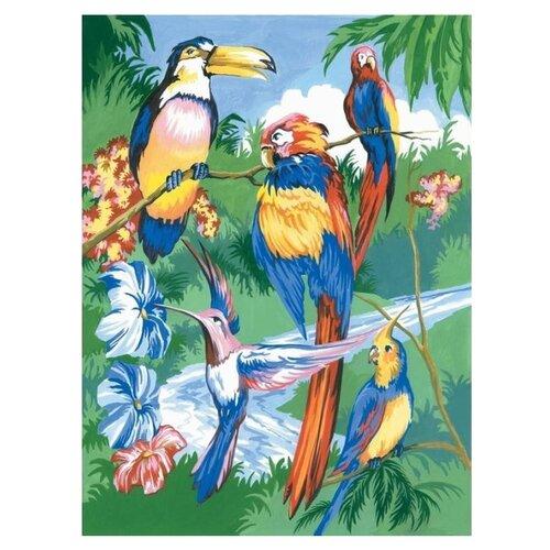 Купить Royal & Langnickel Раскраска по номерам Тропические птицы 22.8х28.9 см (PJS15), Картины по номерам и контурам
