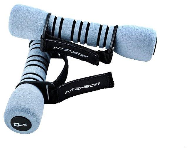 Набор гантелей цельнолитых Intensor M104 2x0.75 кг