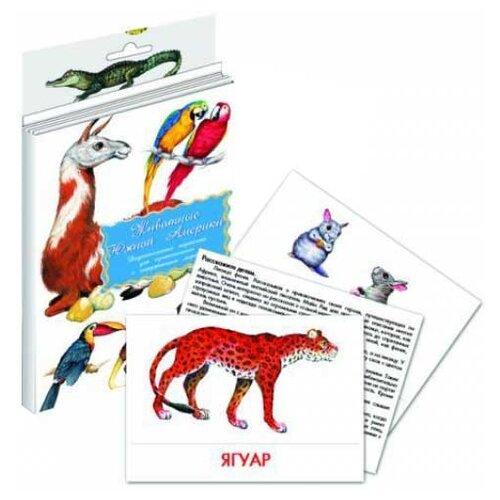 Купить Обучающий набор Маленький гений Животные Южной Америки, Обучающие материалы и авторские методики