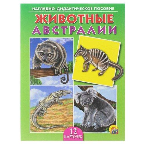 Купить Набор карточек Рыжий кот Животные Австралии 21.5x16.5 см 12 шт., Дидактические карточки