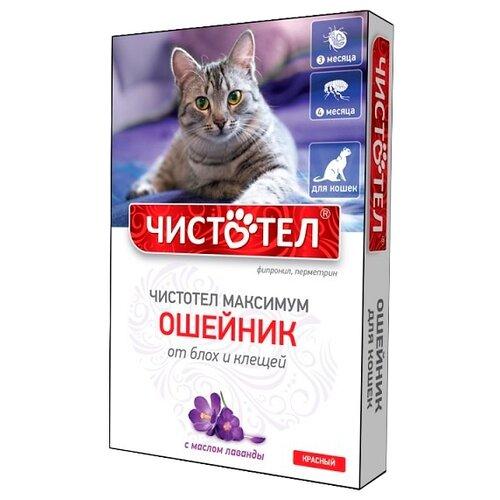 ЧИСТОТЕЛ ошейник от блох и клещей Максимум для кошек, 40 см, красный