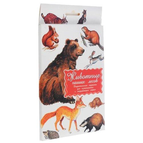 Купить Набор карточек Маленький гений Животные наших лесов 21x15 см 16 шт., Дидактические карточки
