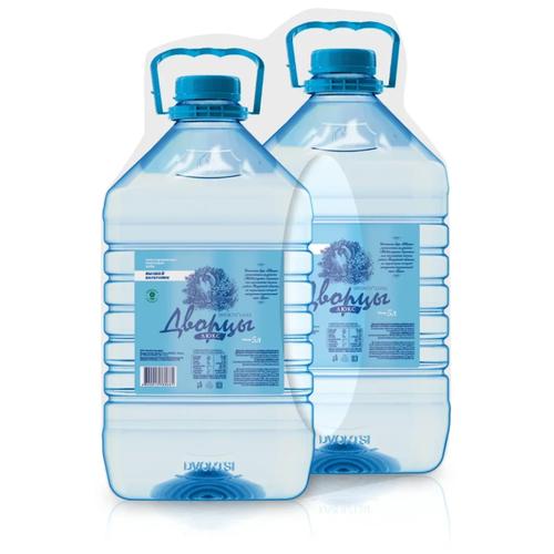 Вода питьевая Дворцы Люкс негазированная, пластик, 2 шт. по 5 л