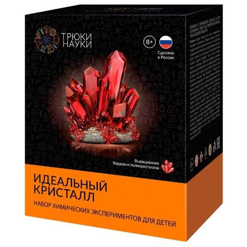 Купить Набор для исследований Трюки науки Идеальный кристалл бордовый, Наборы для исследований