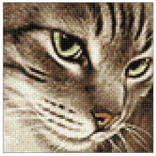 Купить Гранни Набор алмазной вышивки Загадочный кот (Ag 2277) 20х20 см, Алмазная вышивка