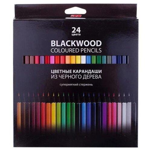 Купить Hatber цветные карандаши BLACK DIAMOND, 24 цвета (BKc_24830), Цветные карандаши