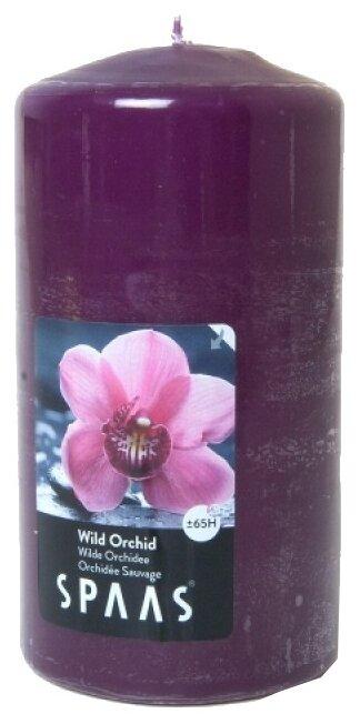 Свеча Spaas Wild Orchid арома столбик — купить по выгодной цене на Яндекс.Маркете