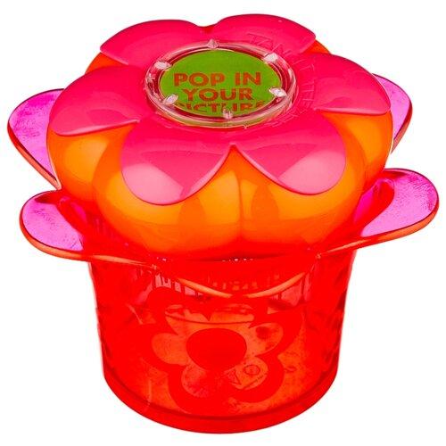 TANGLE TEEZER Массажная щетка Magic Flowerpot tangle teezer magic flowerpot