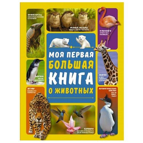 Купить Вайткене Л.Д., Ермакович Д.И. Моя первая большая книга о животных , Аванта (АСТ), Познавательная литература