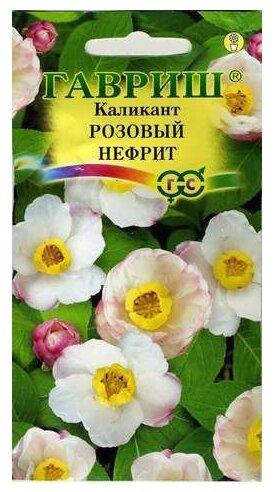 Каликант Розовый нефрит