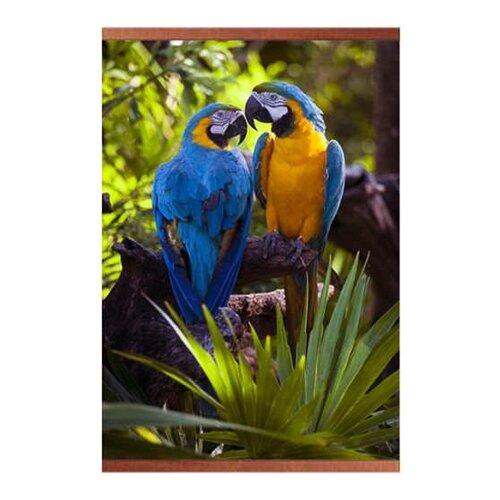 Инфракрасный плёночный обогреватель Домашний очаг настенный попугаи