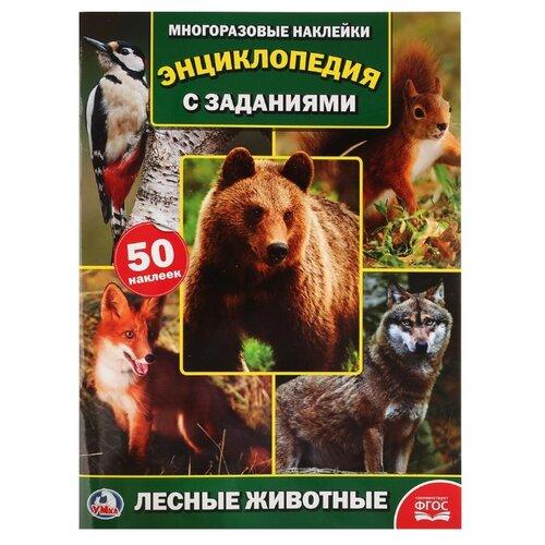 Энциклопедия с заданиями. Лесные животные смилевска л п энц лесные животные энциклопедия а4