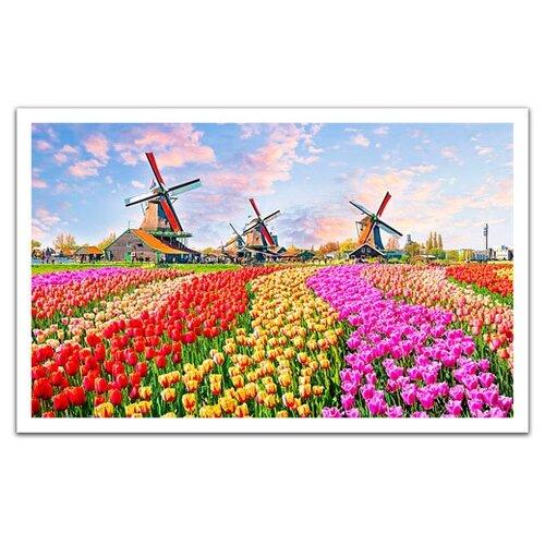 Купить Пазлы 1000 деталей Ветряные мельницы.Нидерланды , Pintoo