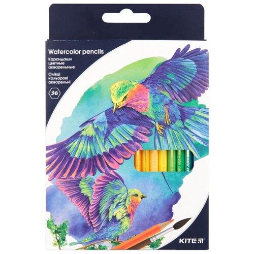 Купить Kite акварельные цветные карандаши, 36 цветов (K18-1052), Цветные карандаши