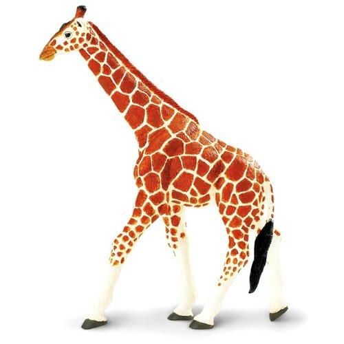 Фото - Фигурка Safari Ltd Сетчатый жираф 111189 фигурка safari ltd амурский тигр 111389