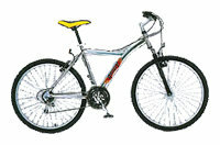 Горный (MTB) велосипед REGGY RG26B4800