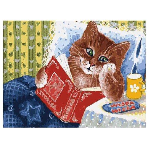 Белоснежка Картина по номерам Котик с книжкой 30х40 см (041-AS) белоснежка алмазная мозаика белоснежка котик в лоскутках 30х40 см
