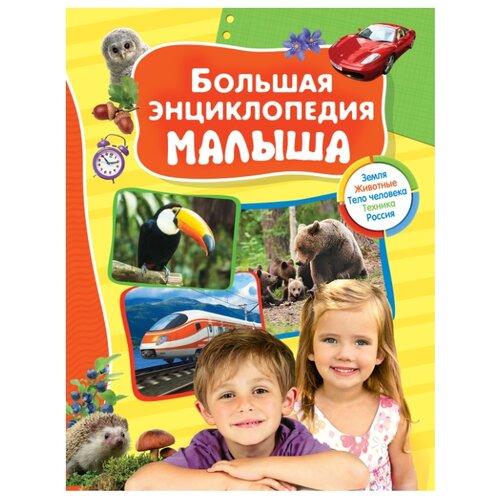 Купить Большая энциклопедия малыша, РОСМЭН, Познавательная литература