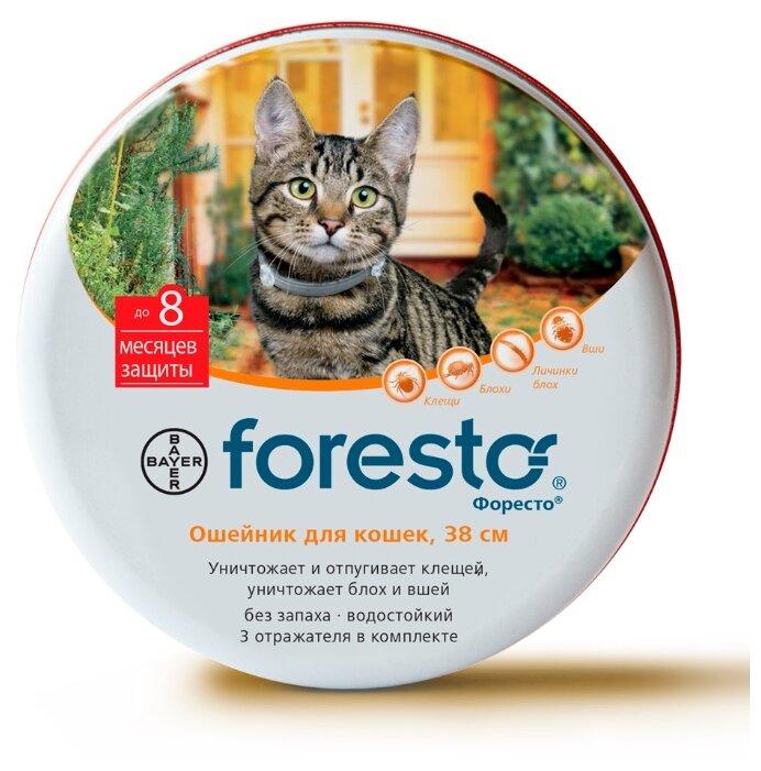 Foresto – Форесто ошейник для кошек против клещей, блох и вшей, 38 см, Bayer (1 шт)
