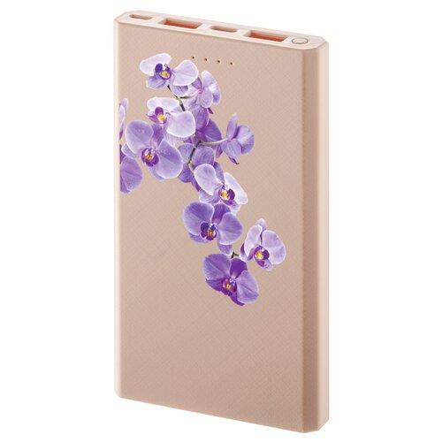 Аккумулятор INTERSTEP PB10000MC, орхидея, коробка