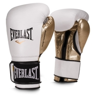 Боксерские перчатки Everlast Powerlock hook & loop navy/green 14 oz