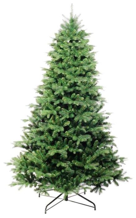Купить Царь елка Ель Кавказская Премиум 1.85 по низкой цене с доставкой из Яндекс.Маркета (бывший Беру)