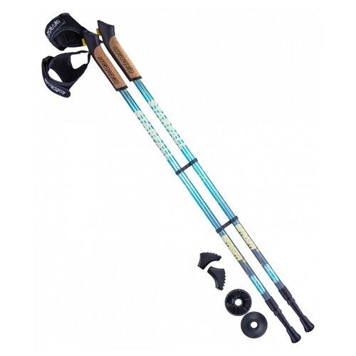Палки для скандинавской ходьбы со сменными комплектующими BERGER Starfall 2-секционная 77-135 см синий/серый/желтый