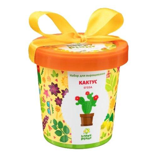 Набор для выращивания Happy Plant Горшок подарочный Кактус Егоза цена 2017