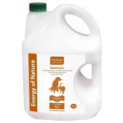 Шампунь Пчелодар Professional Energy of Natural восстанавливающий с прополисом и протеинами шелка Концентрат 1:4 5л