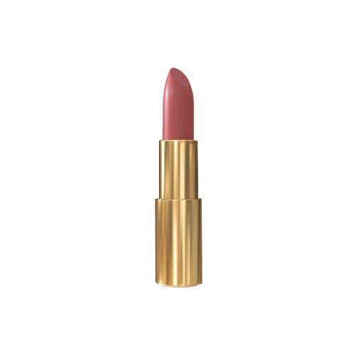 Pierre Rene Помада для губ Royal Mat Lipstick атласная 05 Dusty CedarПомада<br>