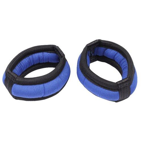 Набор утяжелителей 2 шт. 0.1 кг Indigo SM-147 синий
