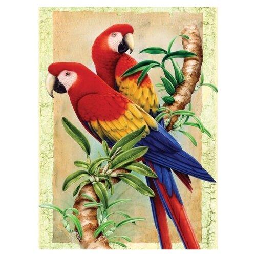 Купить Royal & Langnickel Картина по номерам Бамбуковые попугаи 22х29 см (PJS 38), Картины по номерам и контурам