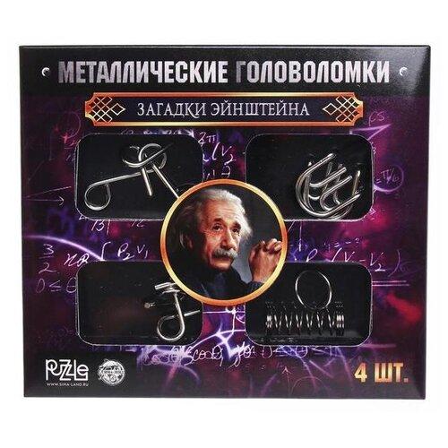 Купить Набор головоломок Puzzle Загадки Эйнштейна (2528228) 4 шт. серебристый, Головоломки