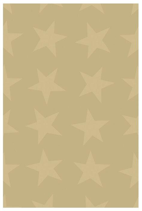 Бумага упаковочная Stewo KR Gleam Star