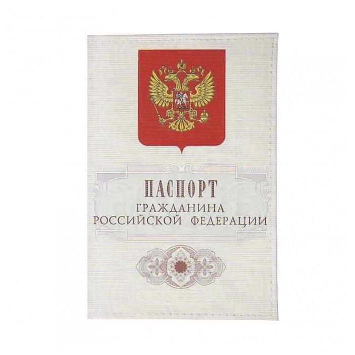 Обложка для паспорта Mitya Veselkov Гражданин РФ OZAM045