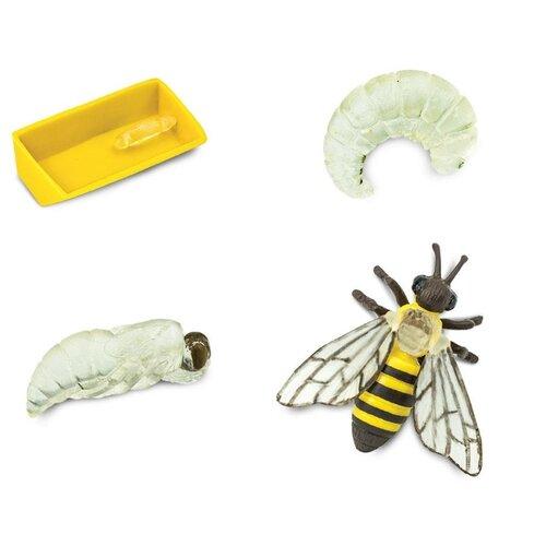 Купить Игровой набор Safari Ltd Жизненный цикл пчелы 622716, Игровые наборы и фигурки