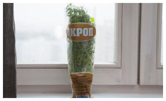 ВкусВилл Укроп в горшочке, пакет полиэтиленовый (Россия)