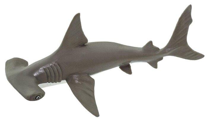 Фигурка Safari Ltd Рыба-молот детеныш 267929