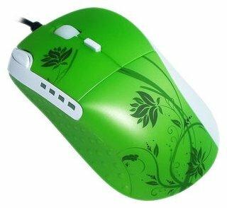 Мышь ETG EM8050-G-S Green USB