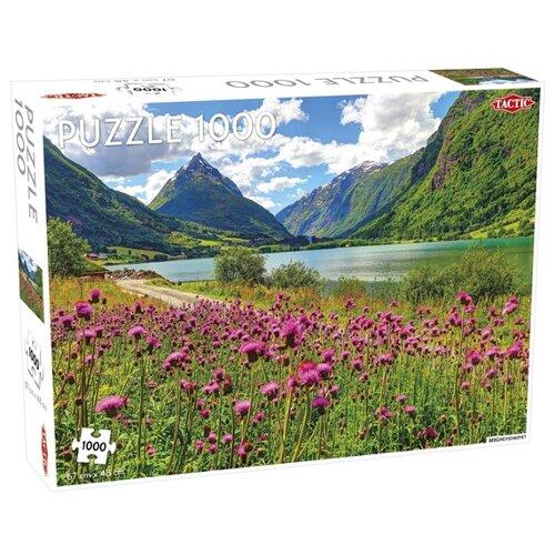 Купить Пазл TACTIC Озеро в горах (55239), элементов: 1000 шт., Пазлы