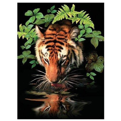 Купить Royal & Langnickel Раскраска по номерам Тигр 22х29 (PJS 57), Картины по номерам и контурам
