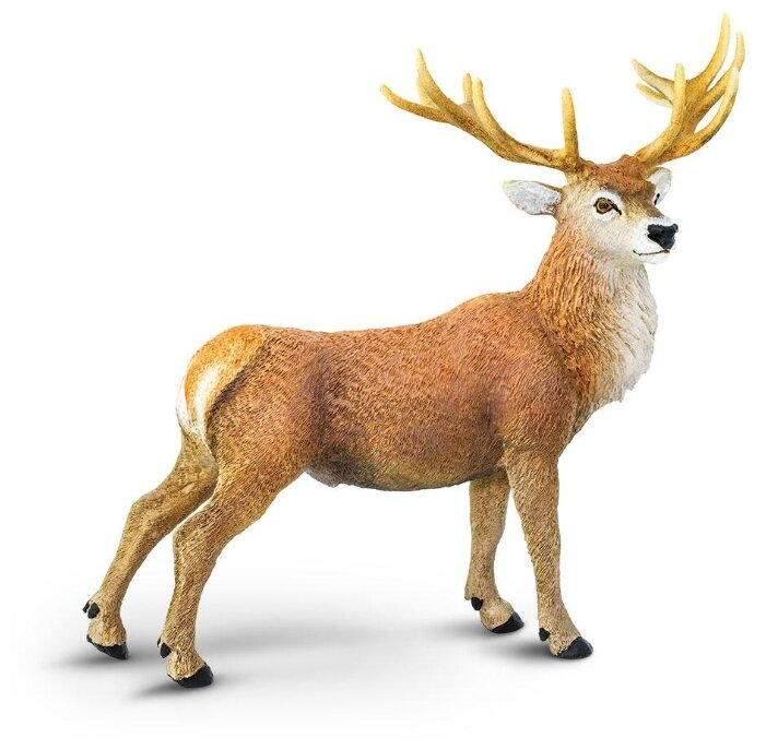 Фигурка Safari Ltd Благородный олень 181929