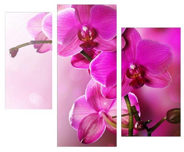Модульная картина KARTINA style Тайна орхидеи